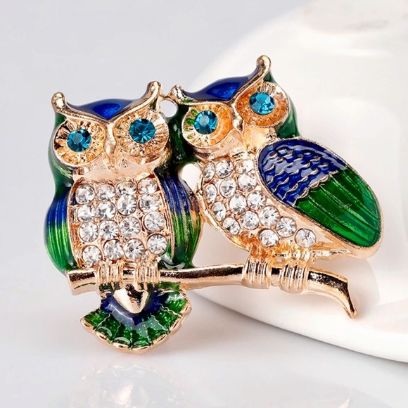 Jewelry - Adorable Owls Crystal Pin
